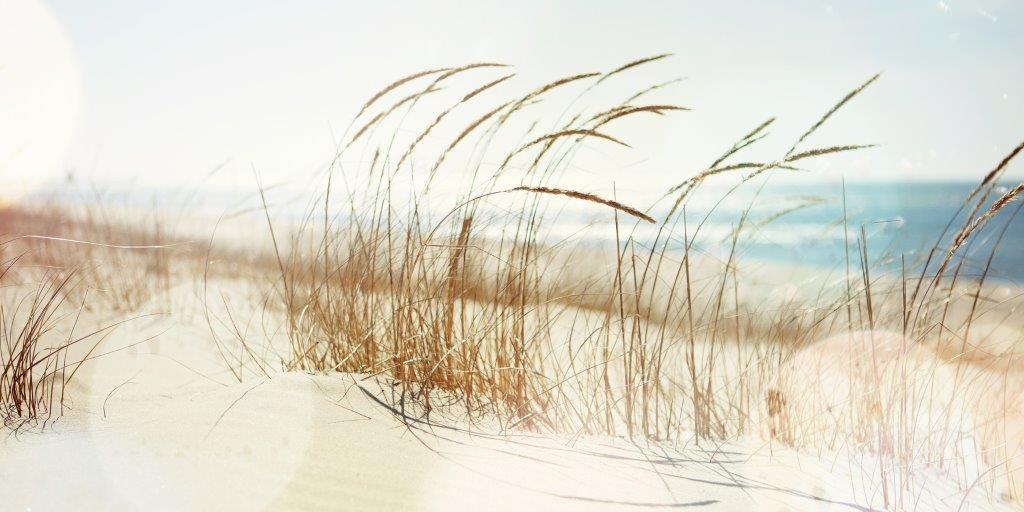 Sand Dune Glass Panel Image